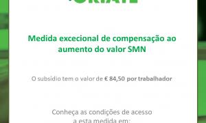 Medida excecional de compensação ao aumento do valor SMN