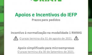 prazo apoios e incentivos iefp 2021